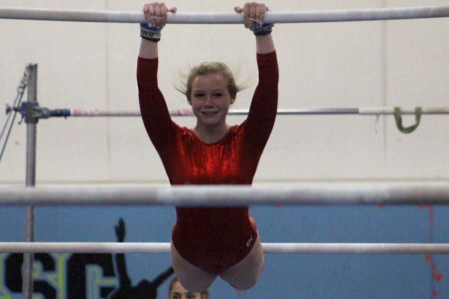 Gymnastics team flies high at states