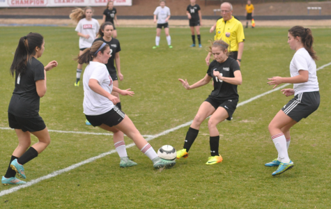 Girls' soccer season preview