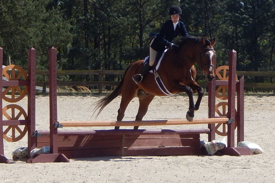 Junior+Stephanie+Collins+takes+on+a+jump+with+her+show+horse%2C+Dance+Steps%2C+at+a+Pre-Child+competition+in+Apex.%0ACollins.