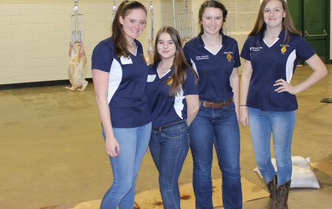 FFA students look back on state performances
