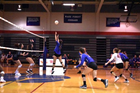 Volleyball Earns Third Place in Northern Conference