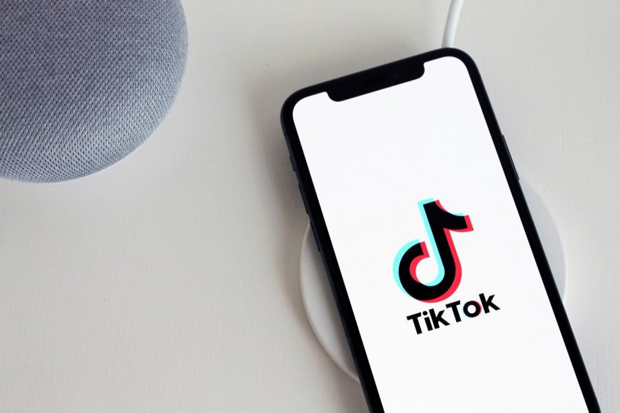 TikTok's Wavering Future